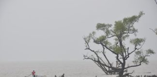 Sea-level rise in Bangladesh predicted to be at risk by 2050